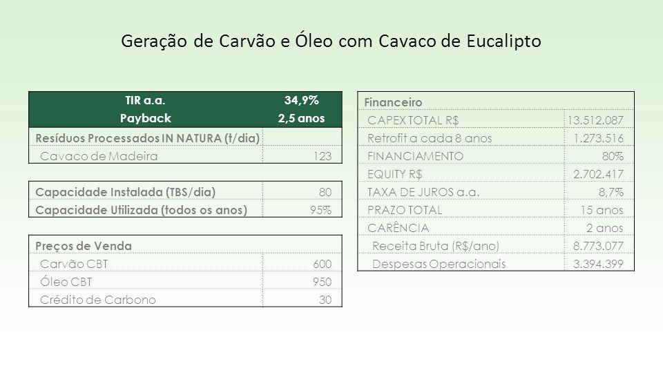 TIR a.a.34,9% Payback2,5 anos Resíduos Processados IN NATURA (t/dia) Cavaco de Madeira123 Capacidade Instalada (TBS/dia) 80 Capacidade Utilizada (todo