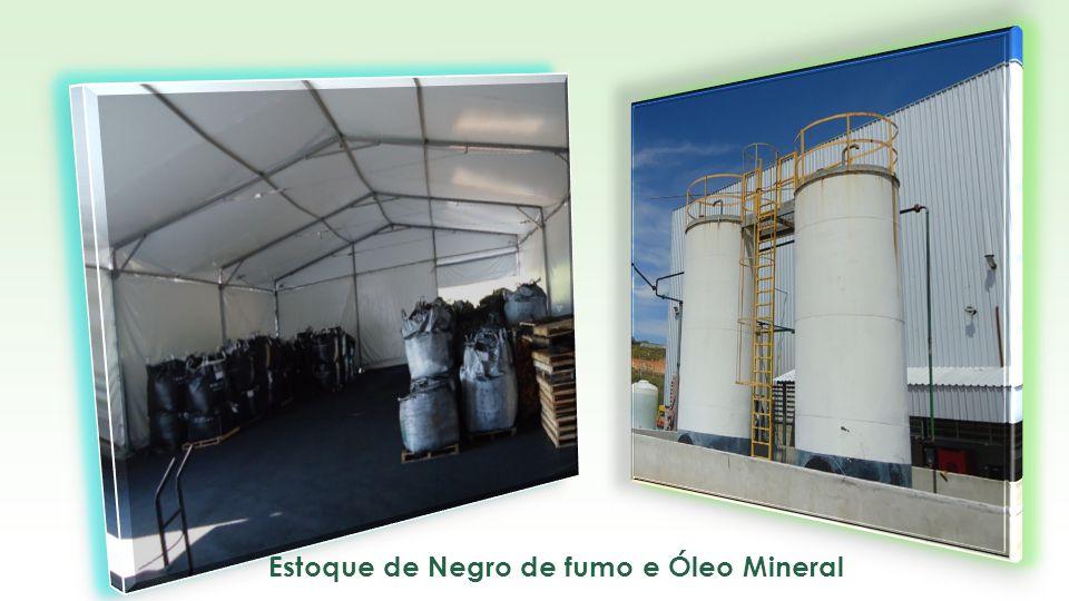 TIR a.a.29,3% Payback3,2 anos Resíduos Processados IN NATURA (t/dia) MOL547 Plástico103 Capacidade Instalada (TBS/dia) 400 Capacidade Utilizada (todos os anos) 95% Potência Bruta (MW)15,9 Potência Líquida (MW)13,3 Preços de Venda Crédito de Carbono (R$/RCE)30 Energia Elétrica (R$/MW)170 Recebimento do Lixo - Tarifa Média (R$/t)50 Financeiro CAPEX TOTAL R$93.248.714 Retrofit a cada 8 anos8.661.988 FINANCIAMENTO80% EQUITY R$18.649.743 TAXA DE JUROS a.a.8,7% PRAZO TOTAL15 anos CARÊNCIA2 anos Receita Bruta (R$/ano)32.582.914 Despesas Operacionais10.122.755 Investimento por MW (R$)5.864.699 Custo Operacional por MWh (R$)80 Energia p/exportação (MWh/ano)99.919 Quantidade estimada de RCEs/ano183.039 Geração de Energia com Lixo Urbano