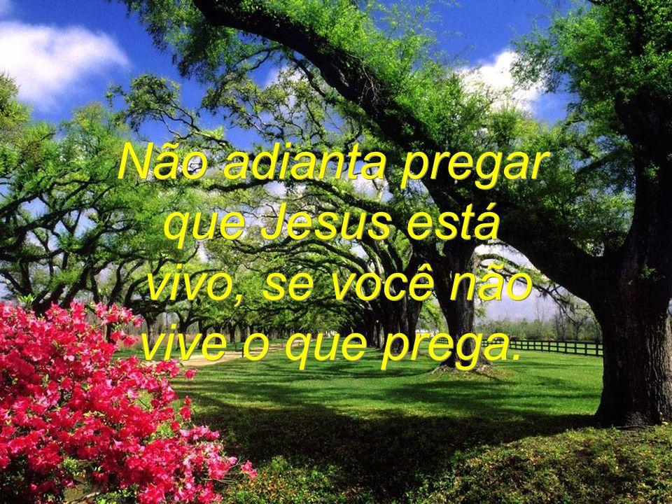 Não adianta pedir perdão a Deus, Se você não perdoa o seu próximo.