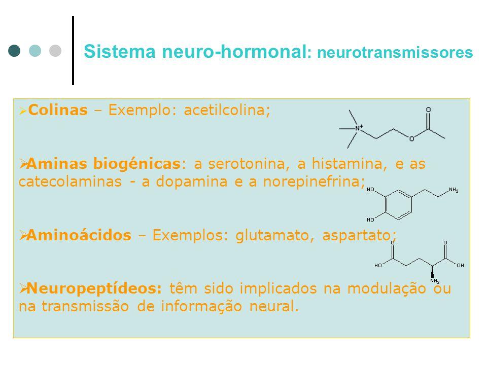  C Colinas – Exemplo: acetilcolina; AAminas biogénicas: a serotonina, a histamina, e as catecolaminas - a dopamina e a norepinefrina; AAminoácid