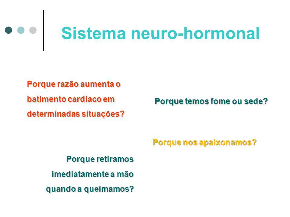 Sistema neuro-hormonal A função do sistema nervoso e endócrino (hormonal) é coordenar a atividade do nosso organismo.