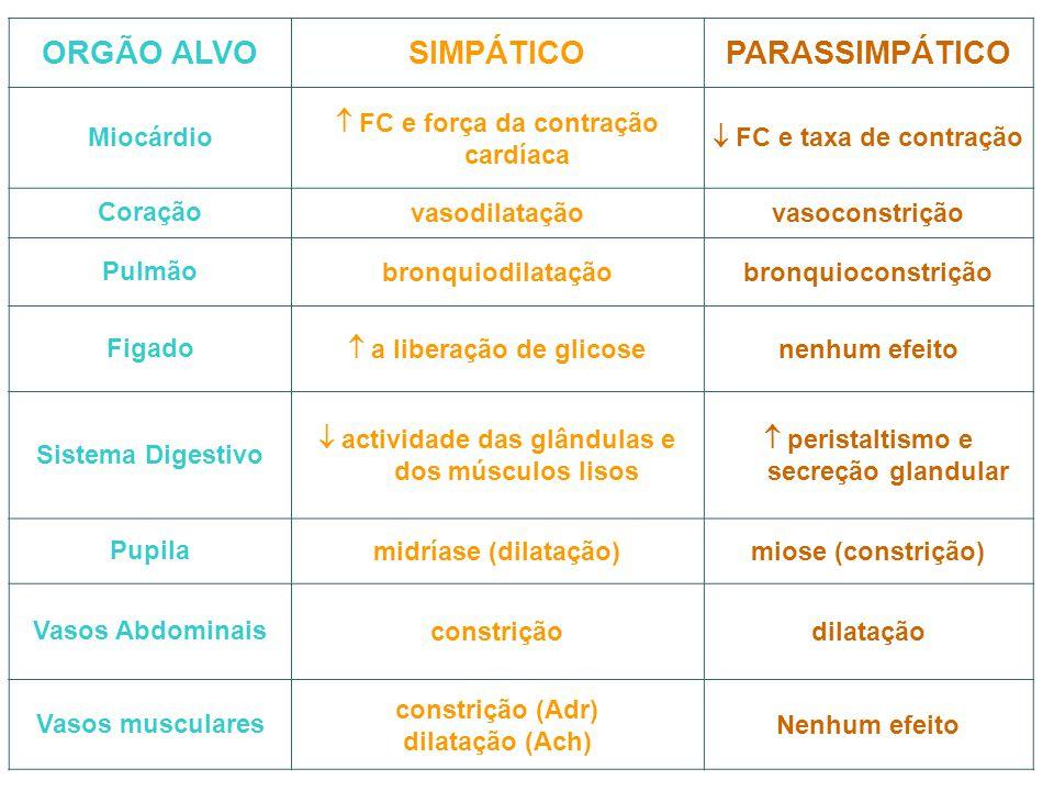 ORGÃO ALVOSIMPÁTICOPARASSIMPÁTICO Miocárdio  FC e força da contração cardíaca  FC e taxa de contração Coraçãovasodilataçãovasoconstrição Pulmãobronq