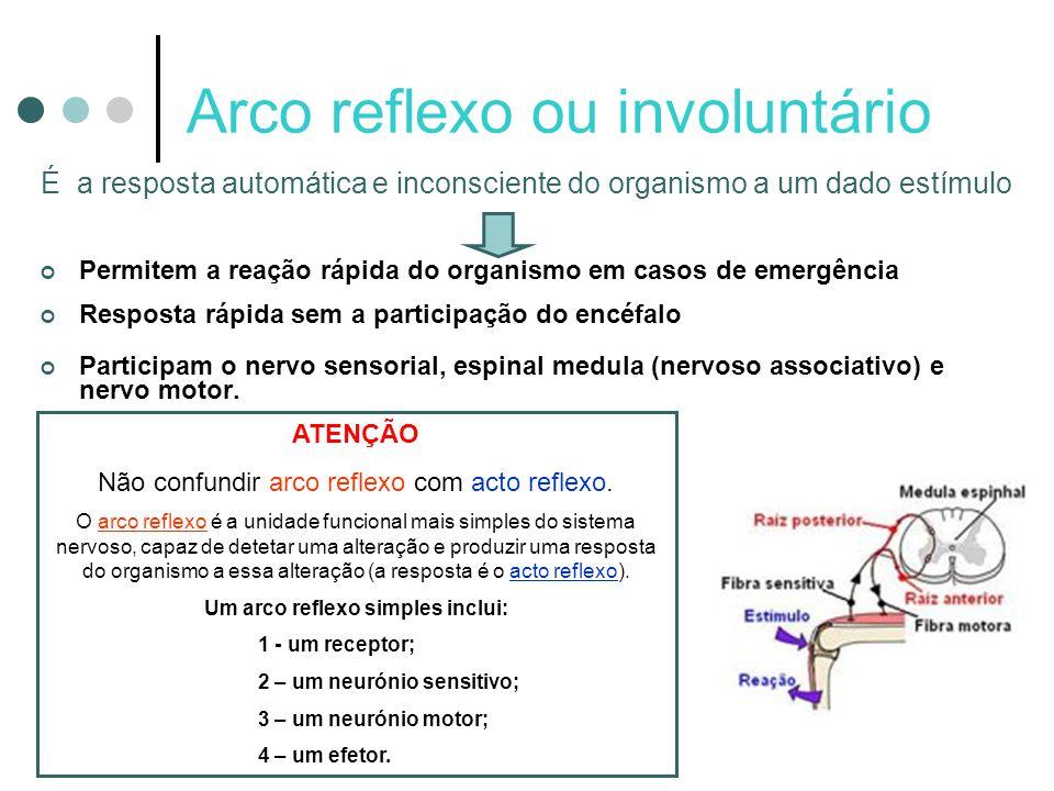 Arco reflexo ou involuntário É a resposta automática e inconsciente do organismo a um dado estímulo Permitem a reação rápida do organismo em casos de