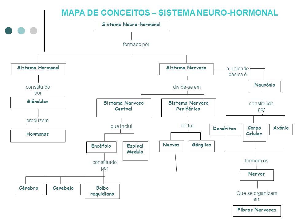 formado por Sistema Neuro-hormonal Que se organizam em Sistema Hormonal produzem Nervos constituído por divide-se em Hormonas Cérebro constituído por
