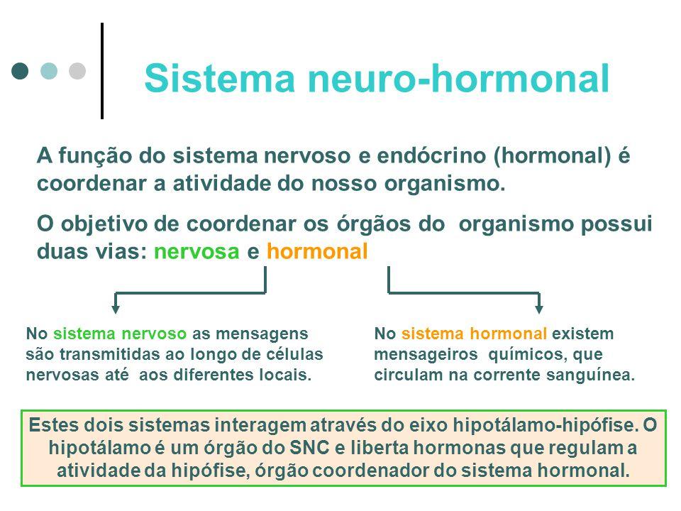 Sistema neuro-hormonal A função do sistema nervoso e endócrino (hormonal) é coordenar a atividade do nosso organismo. O objetivo de coordenar os órgão