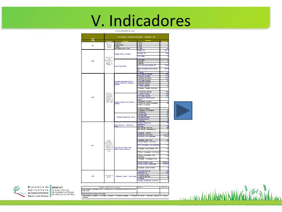 V. Indicadores ACTIVIDADES DESENVOLVIDAS 6300 Áreas funcionais da Divisão de Fitossanidade e Certificação – DFC Código ProcessosActividades Indicadore