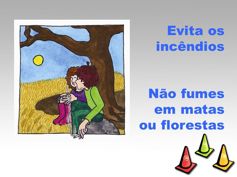 Evita os incêndios Não fumes em matas ou florestas