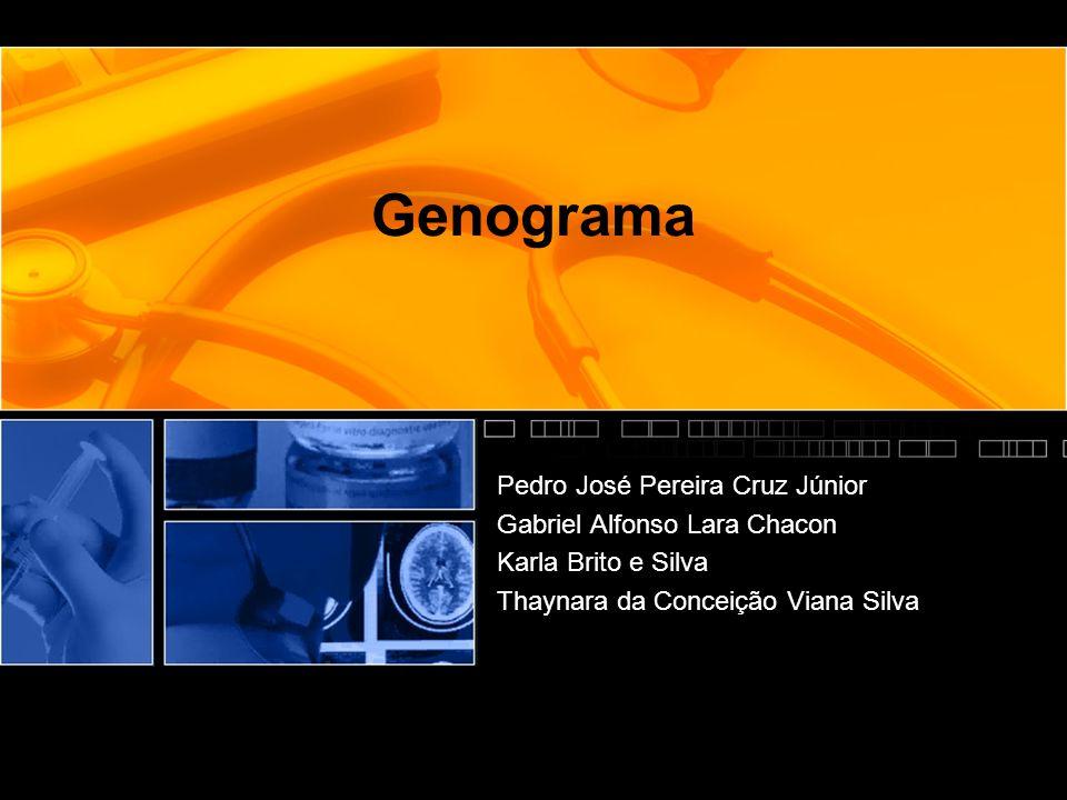 Genograma Pedro José Pereira Cruz Júnior Gabriel Alfonso Lara Chacon Karla Brito e Silva Thaynara da Conceição Viana Silva