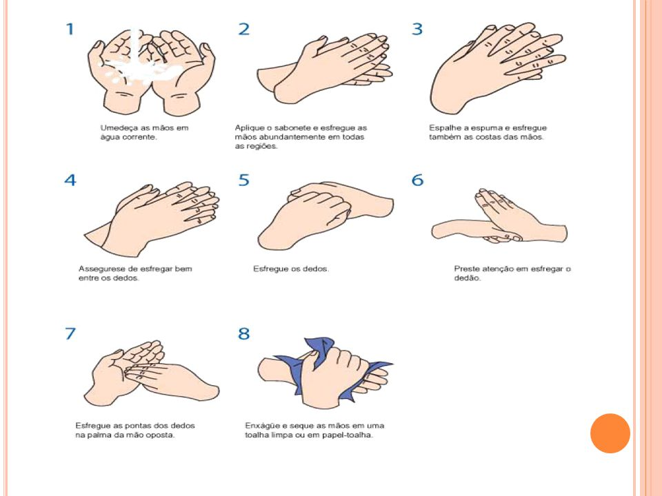 Pia exclusiva para lavagem das mãos; Impresso afixado, sabonete anti-séptico, papel toalha; Cuidados com as Mãos