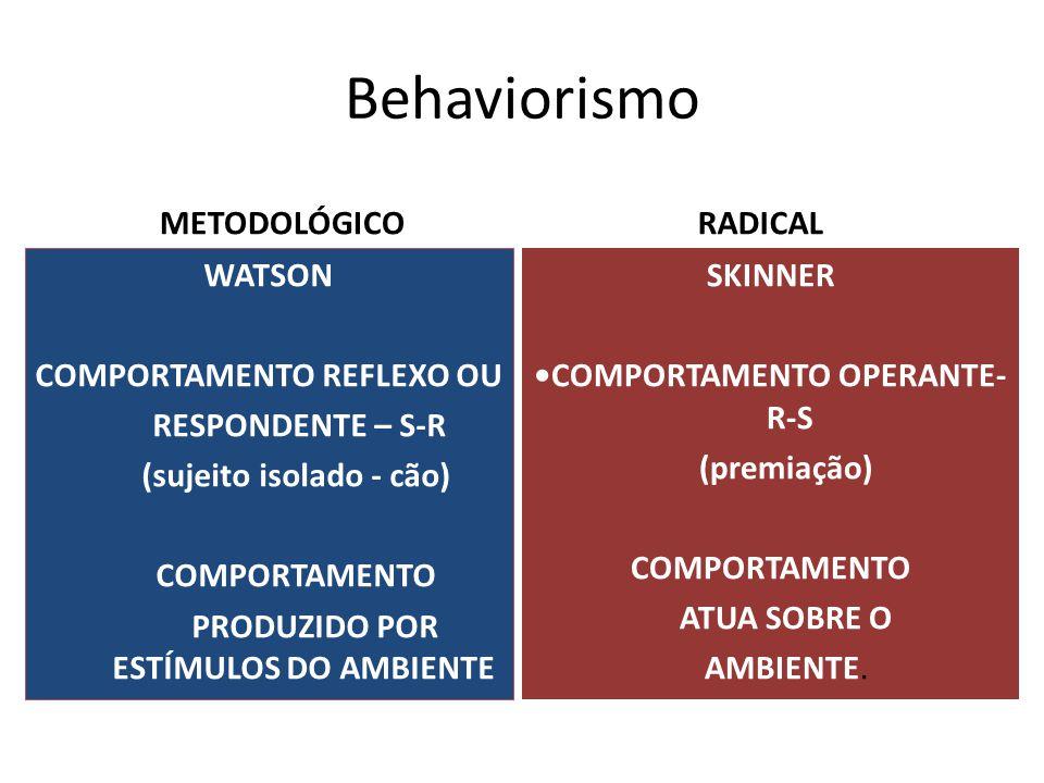 Behaviorismo METODOLÓGICO WATSON COMPORTAMENTO REFLEXO OU RESPONDENTE – S-R (sujeito isolado - cão) COMPORTAMENTO PRODUZIDO POR ESTÍMULOS DO AMBIENTE