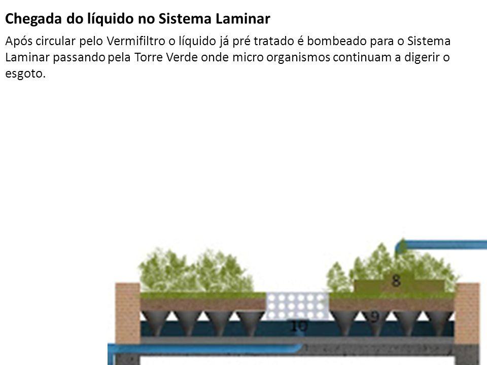 Chegada do líquido no Sistema Laminar Após circular pelo Vermifiltro o líquido já pré tratado é bombeado para o Sistema Laminar passando pela Torre Ve