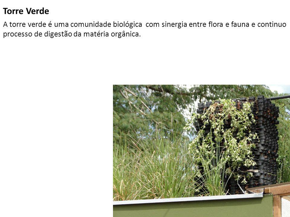 Torre Verde A torre verde é uma comunidade biológica com sinergia entre flora e fauna e continuo processo de digestão da matéria orgânica.