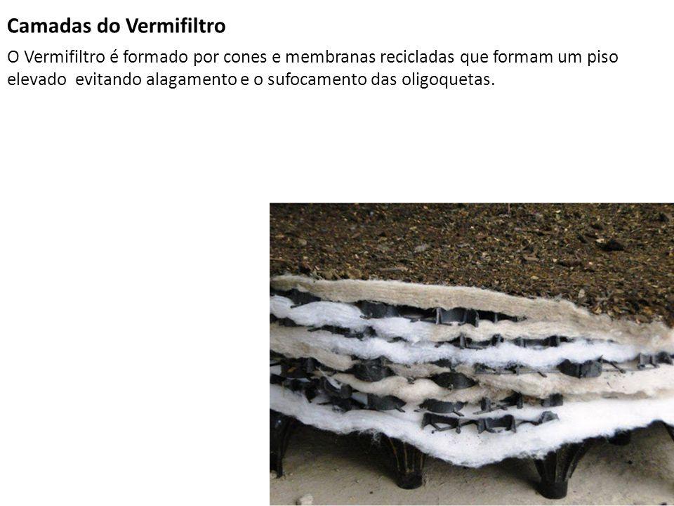 Camadas do Vermifiltro O Vermifiltro é formado por cones e membranas recicladas que formam um piso elevado evitando alagamento e o sufocamento das oli