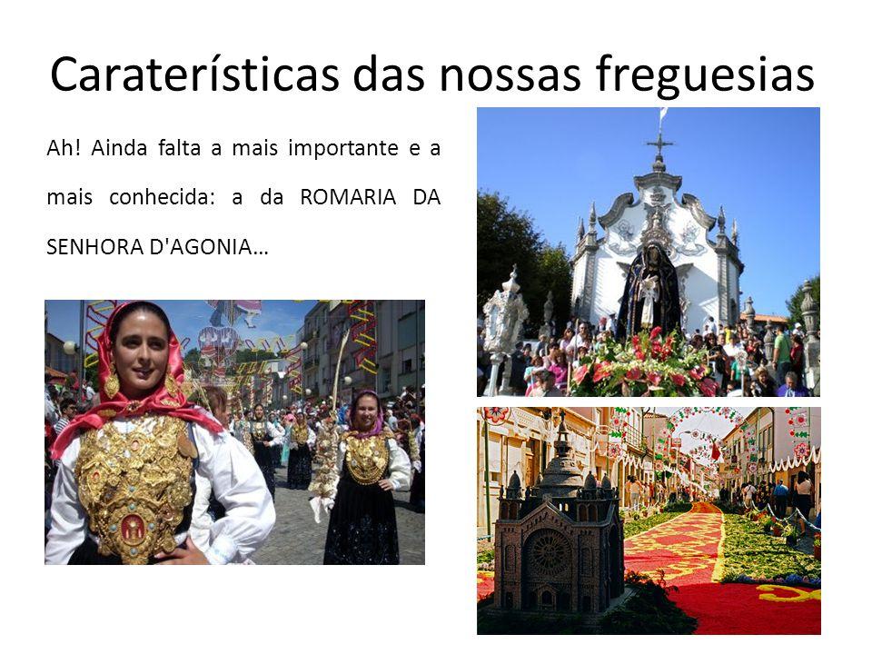 Ah! Ainda falta a mais importante e a mais conhecida: a da ROMARIA DA SENHORA D'AGONIA… Caraterísticas das nossas freguesias