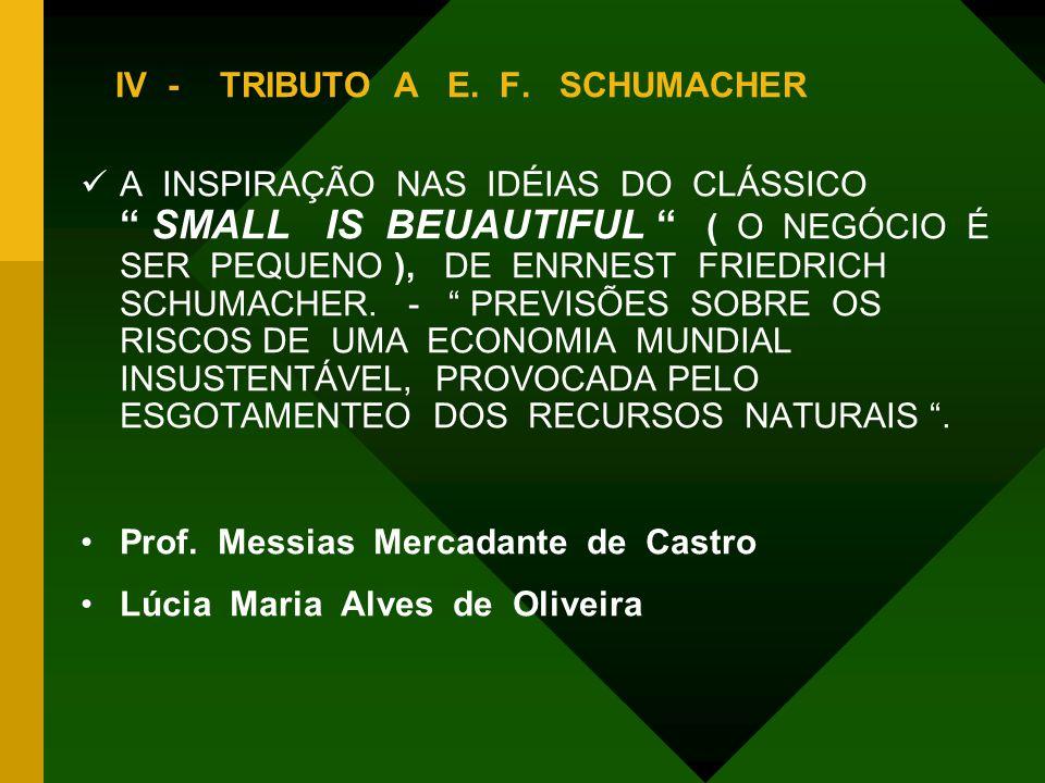 """IV -TRIBUTO A E. F. SCHUMACHER  A INSPIRAÇÃO NAS IDÉIAS DO CLÁSSICO """" SMALL IS BEUAUTIFUL """" ( O NEGÓCIO É SER PEQUENO ), DE ENRNEST FRIEDRICH SCHUMAC"""