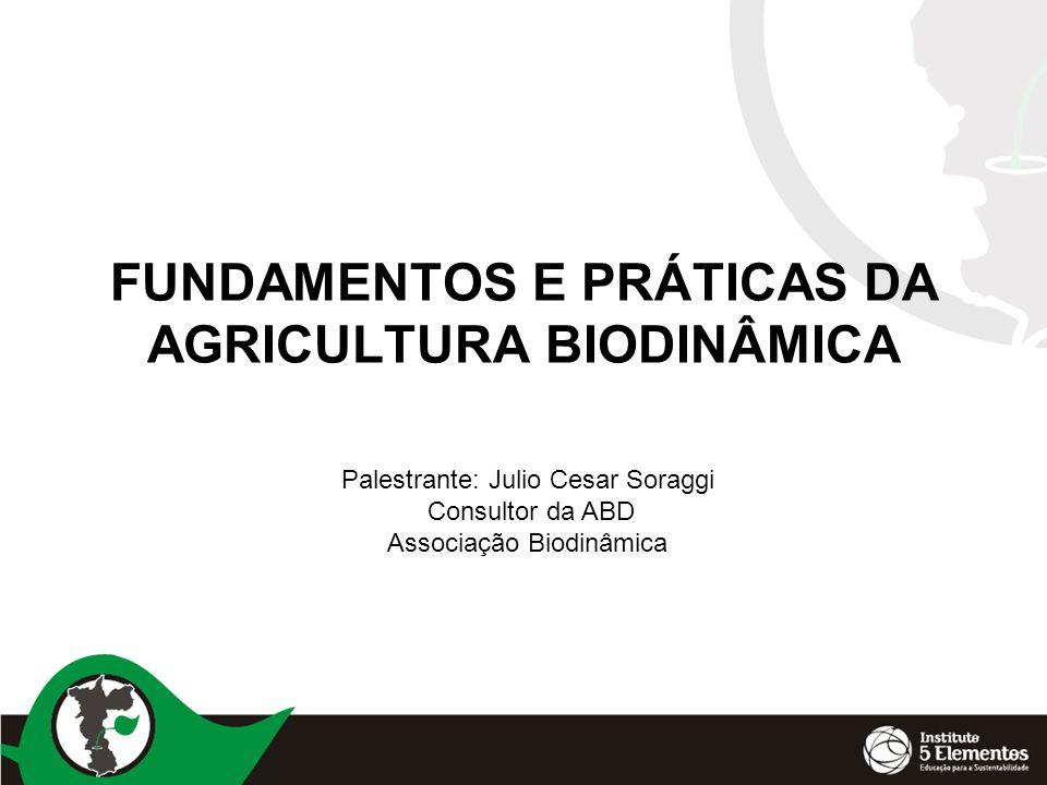 FUNDAMENTOS E PRÁTICAS DA AGRICULTURA BIODINÂMICA Palestrante: Julio Cesar Soraggi Consultor da ABD Associação Biodinâmica