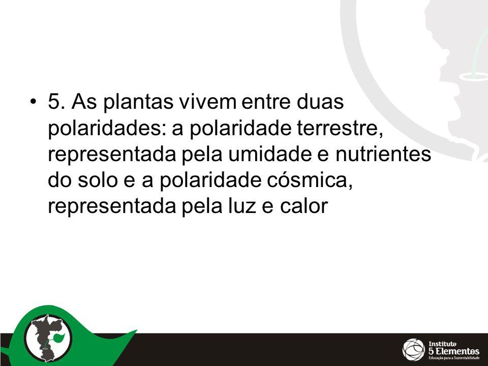 •5. As plantas vivem entre duas polaridades: a polaridade terrestre, representada pela umidade e nutrientes do solo e a polaridade cósmica, representa