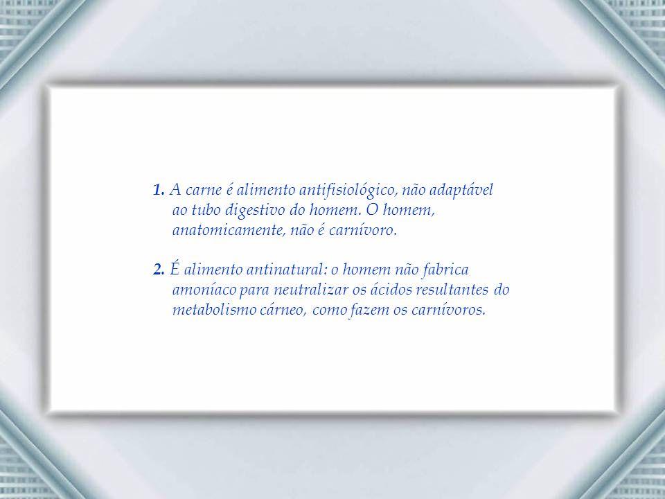 1.A carne é alimento antifisiológico, não adaptável ao tubo digestivo do homem.
