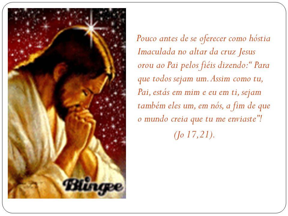 Pouco antes de se oferecer como hóstia Imaculada no altar da cruz Jesus orou ao Pai pelos fiéis dizendo: Para que todos sejam um.