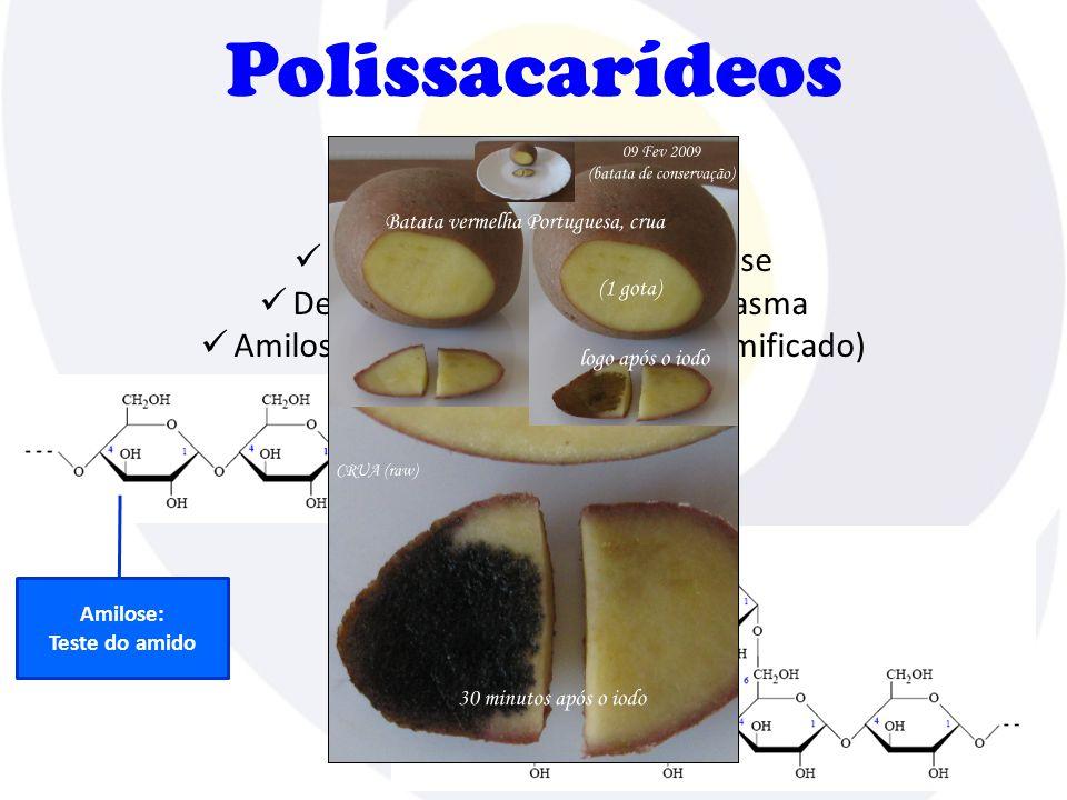 Polissacarídeos Amido  Função energética  Homopolissacarídeo de glicose  Depositado em grãos no citoplasma  Amilose (linear) e amilopectina (ramificado) Amilose: Teste do amido