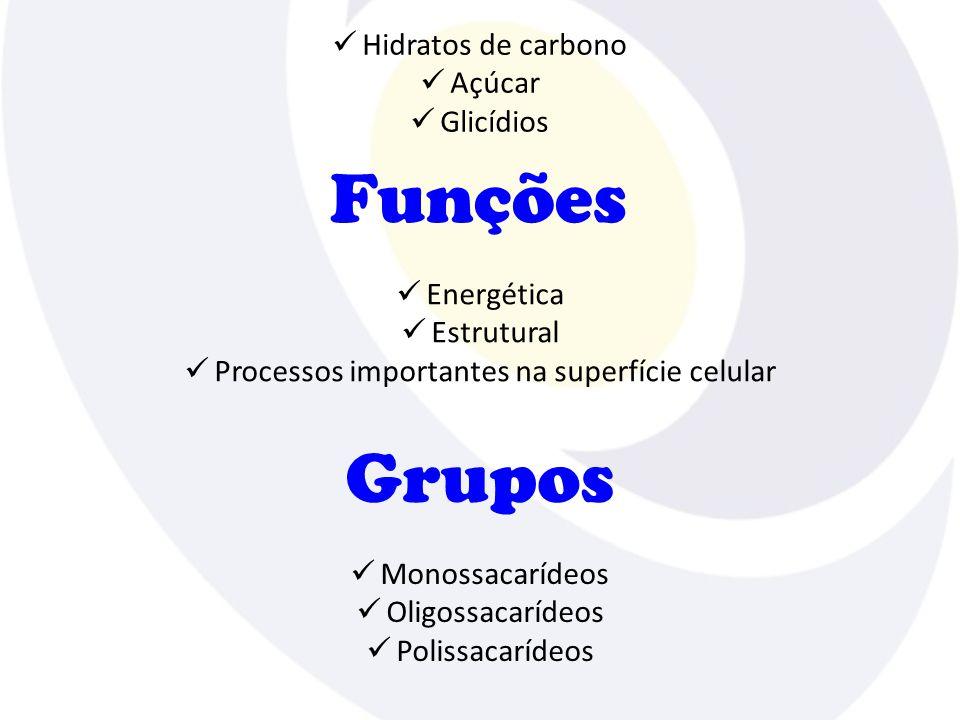  Hidratos de carbono  Açúcar  Glicídios Funções  Energética  Estrutural  Processos importantes na superfície celular Grupos  Monossacarídeos  Oligossacarídeos  Polissacarídeos