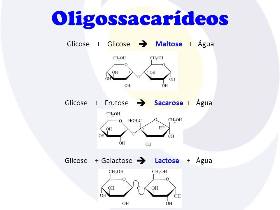 Oligossacarídeos Glicose +MaltoseÁgua+  GlicoseFrutose+SacaroseÁgua+  GlicoseGalactose+LactoseÁgua+ 