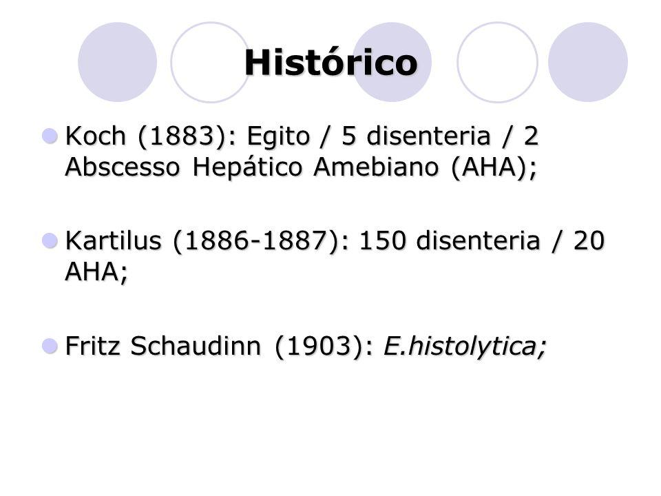 Histórico  Koch (1883): Egito / 5 disenteria / 2 Abscesso Hepático Amebiano (AHA);  Kartilus (1886-1887): 150 disenteria / 20 AHA;  Fritz Schaudinn