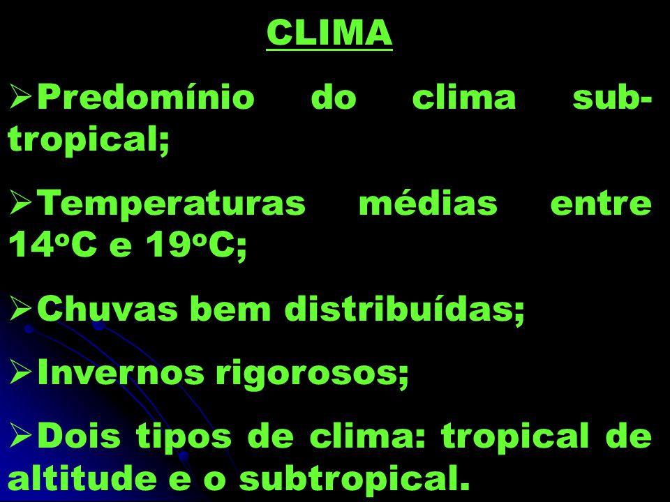 CLIMA  Predomínio do clima sub- tropical;  Temperaturas médias entre 14 o C e 19 o C;  Chuvas bem distribuídas;  Invernos rigorosos;  Dois tipos de clima: tropical de altitude e o subtropical.
