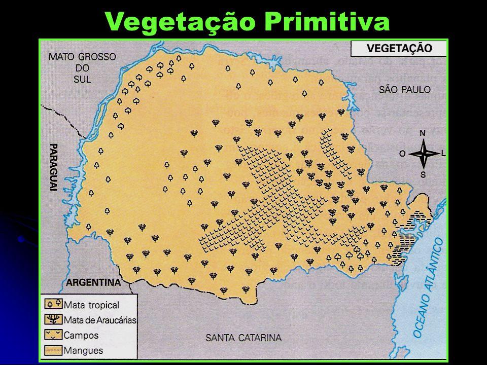 Vegetação Primitiva