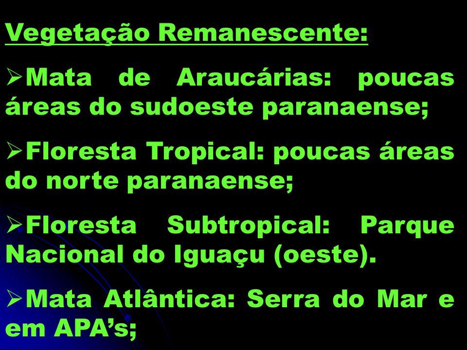 Vegetação Remanescente:  Mata de Araucárias: poucas áreas do sudoeste paranaense;  Floresta Tropical: poucas áreas do norte paranaense;  Floresta Subtropical: Parque Nacional do Iguaçu (oeste).