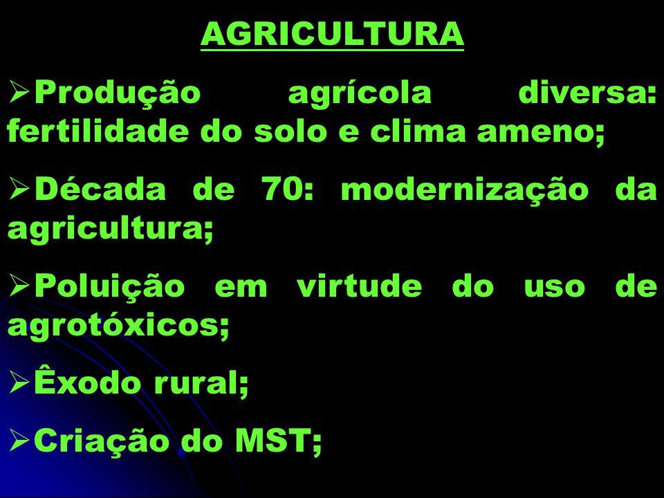AGRICULTURA  Produção agrícola diversa: fertilidade do solo e clima ameno;  Década de 70: modernização da agricultura;  Poluição em virtude do uso de agrotóxicos;  Êxodo rural;  Criação do MST;