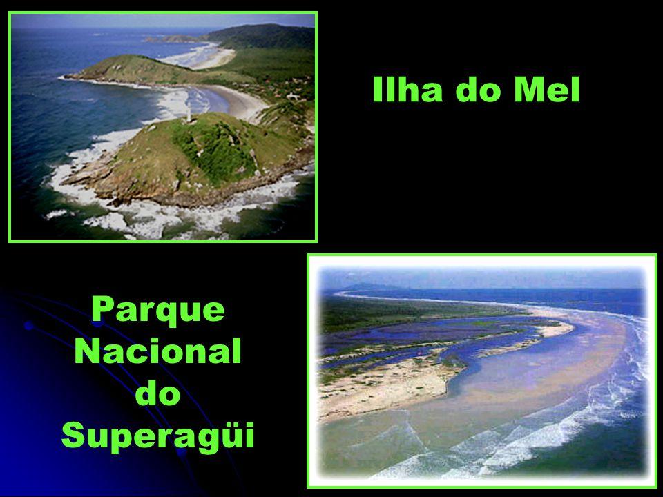 Parque Nacional do Superagüi Ilha do Mel