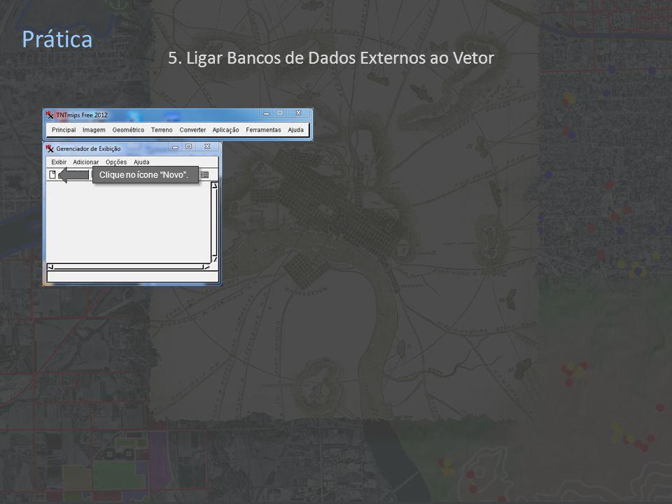 Prática Clique no ícone Novo . 5. Ligar Bancos de Dados Externos ao Vetor