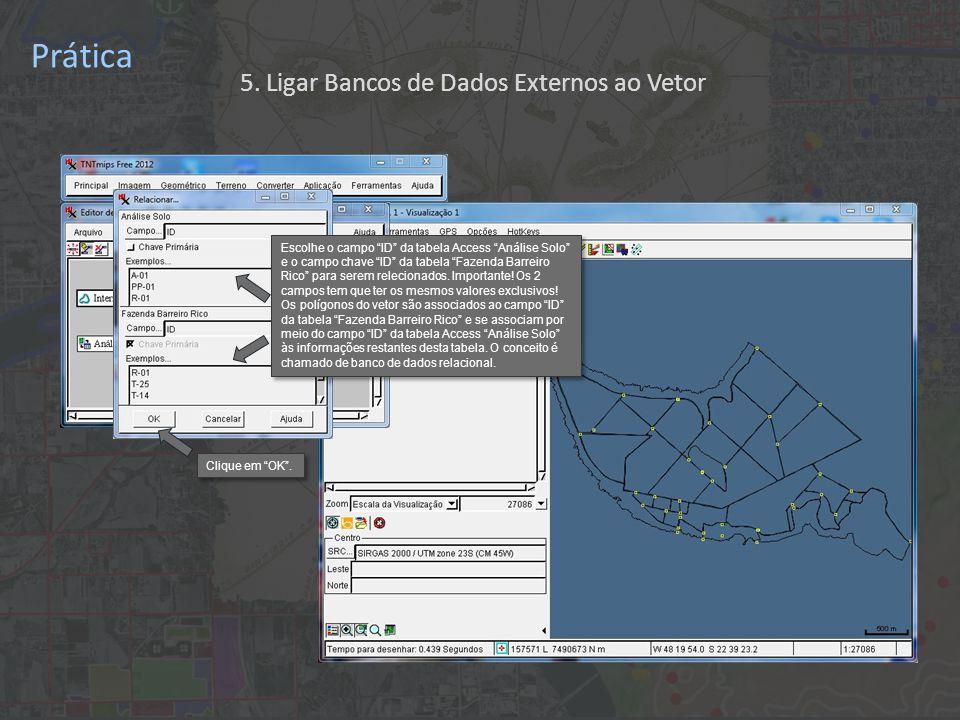 Prática Escolhe o campo ID da tabela Access Análise Solo e o campo chave ID da tabela Fazenda Barreiro Rico para serem relecionados.