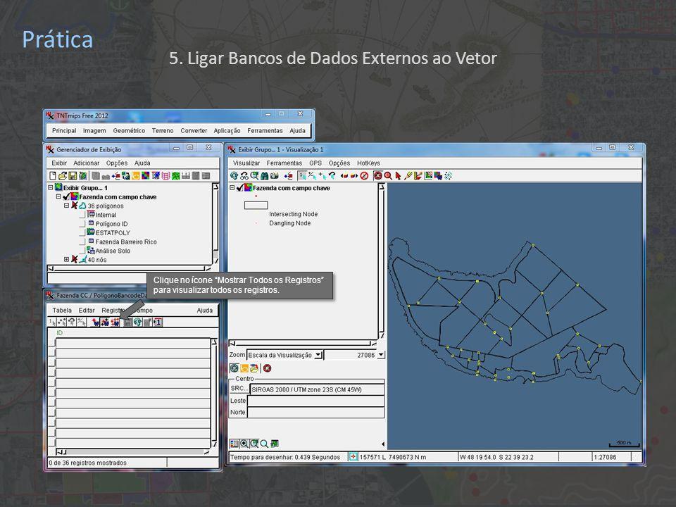 Prática Clique no ícone Mostrar Todos os Registros para visualizar todos os registros.