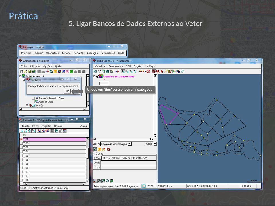 Prática Clique em Sim para encerrar a exibição. 5. Ligar Bancos de Dados Externos ao Vetor