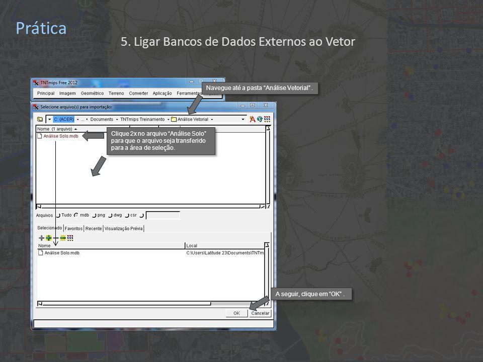 Prática Primeiro, clique em Próximo Escolhe codificação de texto UTF8 que é compatível com a língua portuguesa Clique na caixa Apenas Ligar para criar um link dinâmico entre a tabela de Access e os polígonos de TNTmips.