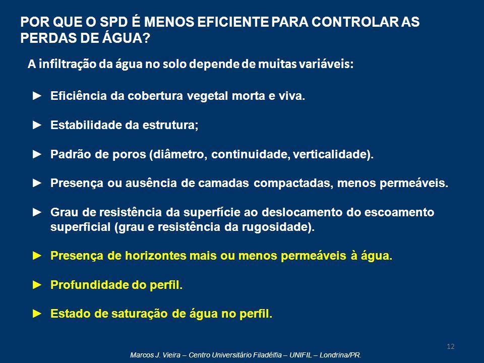 Marcos J. Vieira – Centro Universitário Filadélfia – UNIFIL – Londrina/PR. 12 ►Eficiência da cobertura vegetal morta e viva. ►Estabilidade da estrutur
