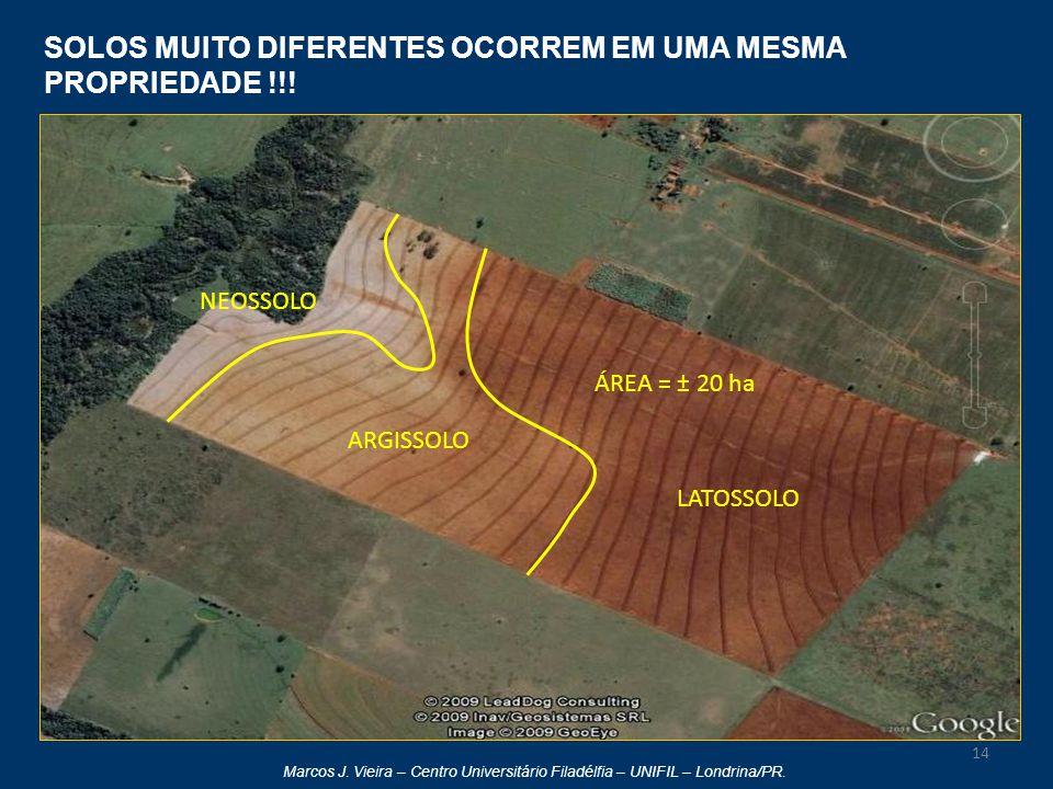 Marcos J. Vieira – Centro Universitário Filadélfia – UNIFIL – Londrina/PR. 14 SOLOS MUITO DIFERENTES OCORREM EM UMA MESMA PROPRIEDADE !!! LATOSSOLO AR