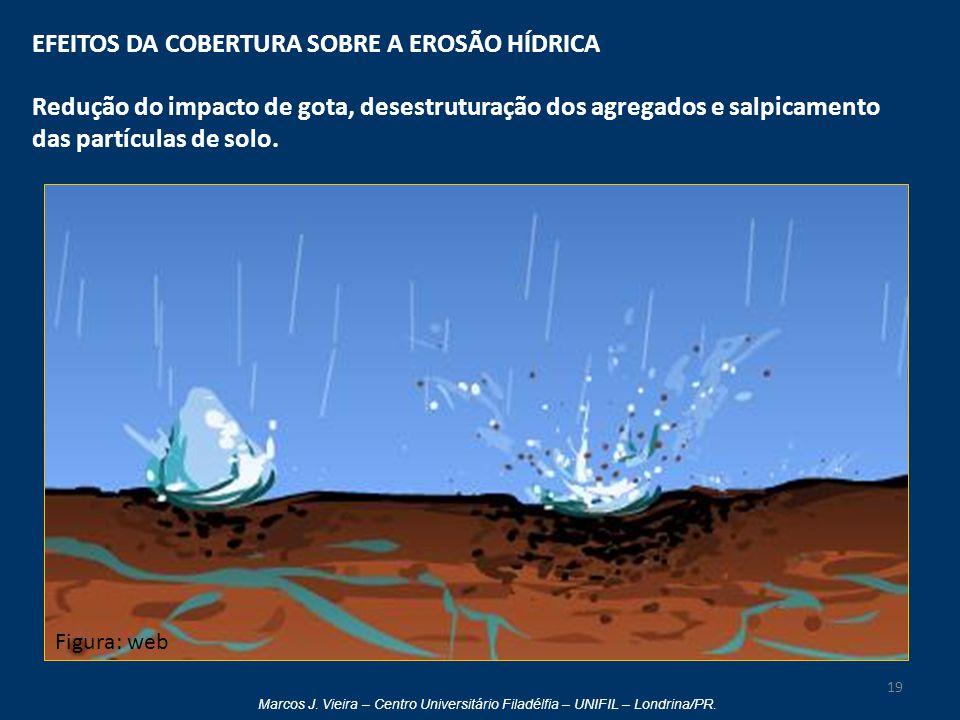 Marcos J. Vieira – Centro Universitário Filadélfia – UNIFIL – Londrina/PR. EFEITOS DA COBERTURA SOBRE A EROSÃO HÍDRICA Redução do impacto de gota, des
