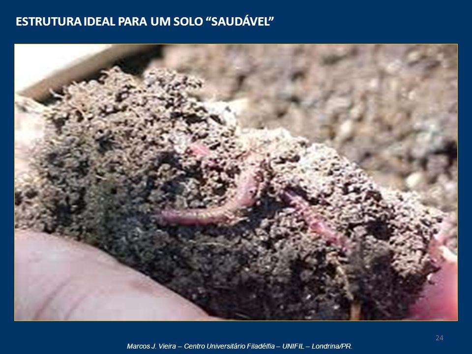 """Marcos J. Vieira – Centro Universitário Filadélfia – UNIFIL – Londrina/PR. ESTRUTURA IDEAL PARA UM SOLO """"SAUDÁVEL"""" 24"""