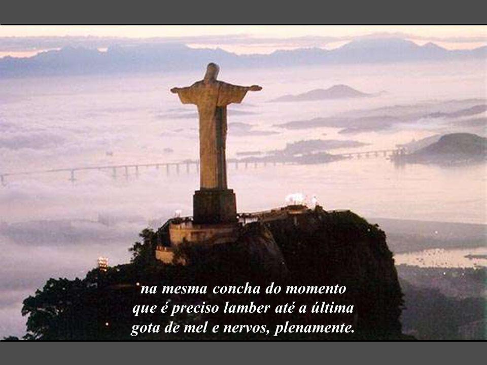 preside ao viver geral, sem muito esforço, pois é lei carioca (ou destino carioca, tanto faz) misturar tristeza, amor e som, trabalho, piada, loteria