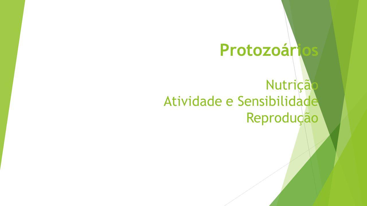Nutrição  Vários tipos de nutrição ocorre entre os protistas podem ser:  Autotróficos  Heterotróficos  Alguns podem ser ambos  Todos os heterotróficos adquirem alimento através da interação entre a superfície da célula e o ambiente.