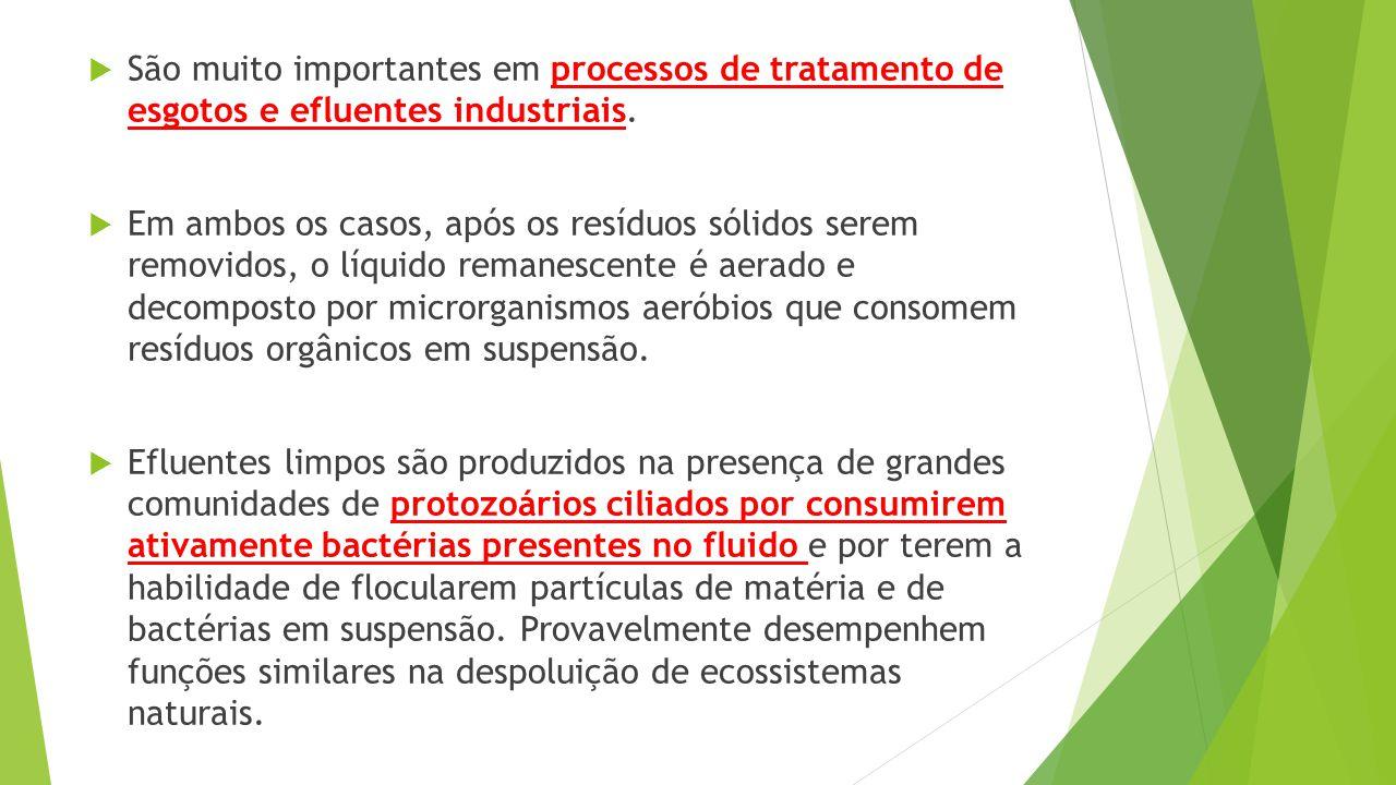  São muito importantes em processos de tratamento de esgotos e efluentes industriais.  Em ambos os casos, após os resíduos sólidos serem removidos,