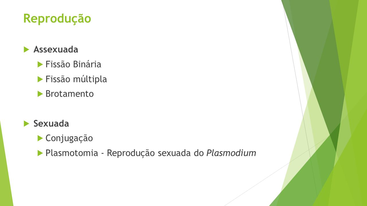 Reprodução  Assexuada  Fissão Binária  Fissão múltipla  Brotamento  Sexuada  Conjugação  Plasmotomia - Reprodução sexuada do Plasmodium