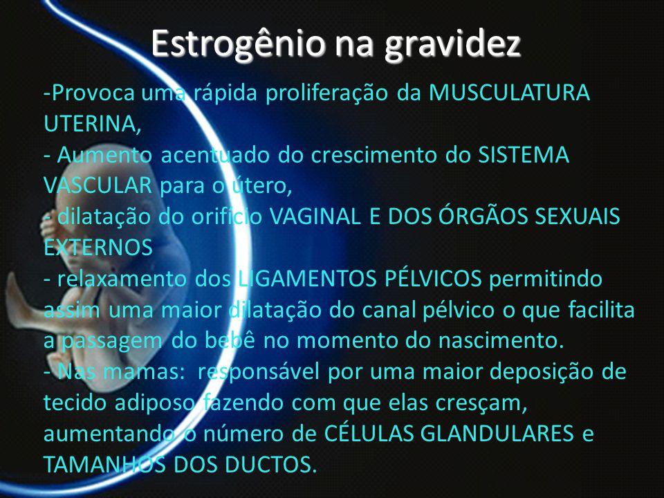 PROF. DR. ARNALDO CALDAS Estrogênio na gravidez -Provoca uma rápida proliferação da MUSCULATURA UTERINA, - Aumento acentuado do crescimento do SISTEMA