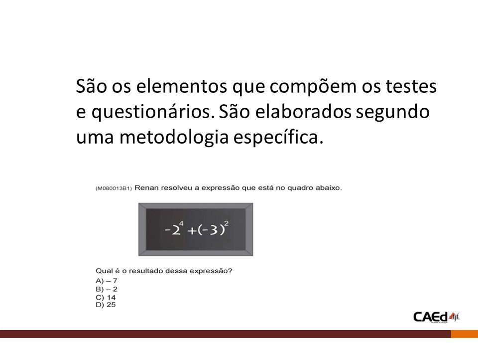 São os elementos que compõem os testes e questionários. São elaborados segundo uma metodologia específica.