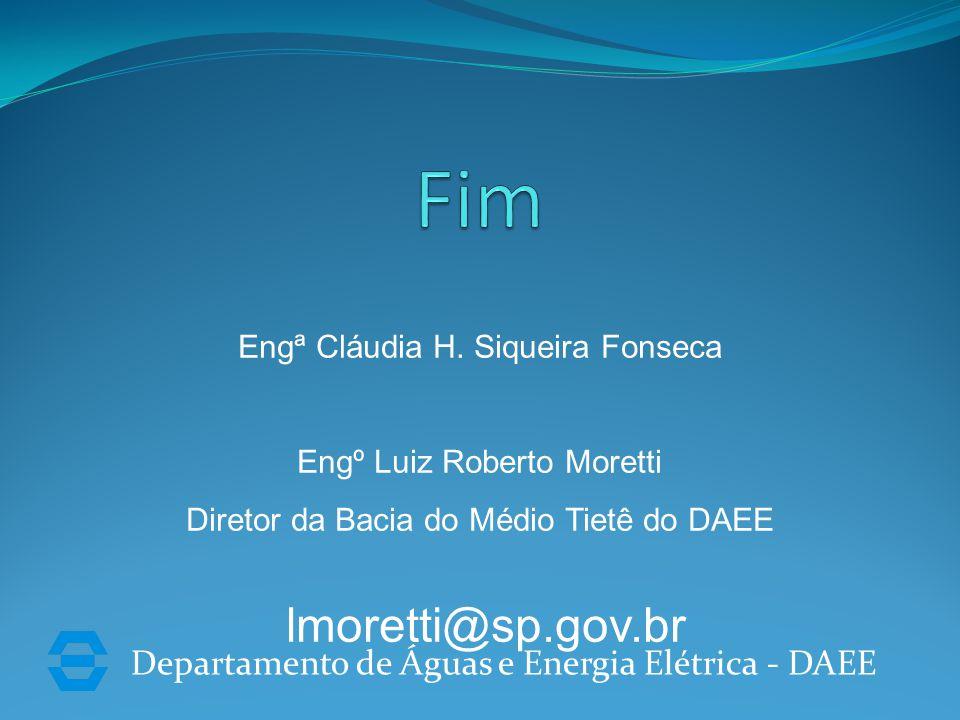 Departamento de Águas e Energia Elétrica - DAEE Engª Cláudia H.
