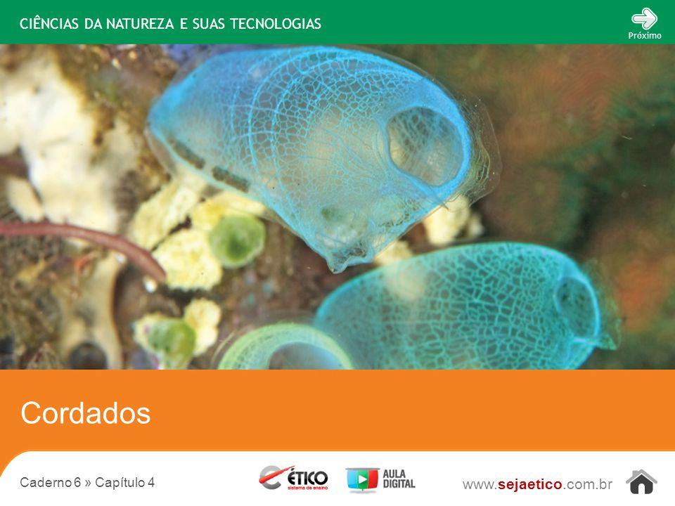 CIÊNCIAS DA NATUREZA E SUAS TECNOLOGIAS www.sejaetico.com.br Próximo Caderno 6 » Capítulo 4 Cordados
