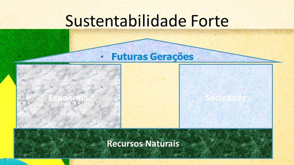 Sustentabilidade Forte • Futuras Gerações EconomiaSociedade Recursos Naturais
